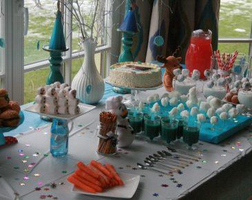 Naminio gimtadienio vinys