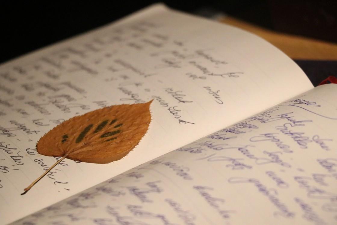 Ranka rašytas dienoraštis vaikui su džiovintu medžio lapu