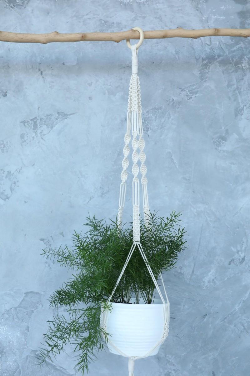 Kabykla augalams