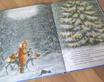 Pirmoji advento tradicija – žiemos knygos